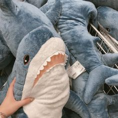 a cloudless sky Aesthetic Colors, Aesthetic Photo, Aesthetic Pictures, Aesthetic Korea, Cute Shark, Baby Shark, Ravenclaw, Shark Plush, Plushies