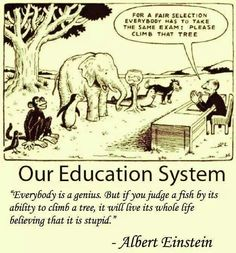 For a Fair Selection Everybody Has to Take the Same Exam Please Climb That Tree Our Education System Everybody Is a Genius but if You Judge a Fish by Its Ability to Climb a Tree It Will Live Its Whole Life Believing That It Is Stupid Albert Einstein Wisdom Quotes, True Quotes, Motivational Quotes, Funny Quotes, Funny Memes, Inspirational Quotes, Quotes Pics, Real Life Quotes, Life Lesson Quotes