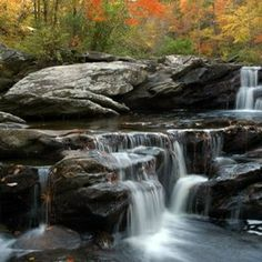Devil's Den Falls (Alabama)- easy hike, pretty falls and area to play in the water