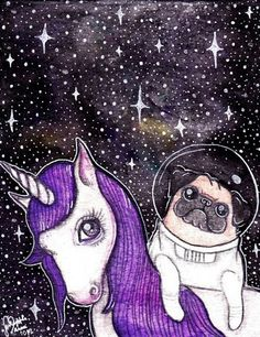 That's just silly. Pugs can't go to space.