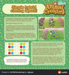 This sub is a friendly place where you don't have to pay ridiculous fees in Animal Crossing! We now have a Discord! Animal Crossing Guide, Animal Crossing Qr Codes Clothes, Animal Games, My Animal, Flower Chart, Motif Acnl, Garden Animals, New Leaf, Colorful Flowers