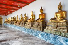 Line of Buddhas at the Grand Palace in Bangkok    http://www.hello-thailand.net/