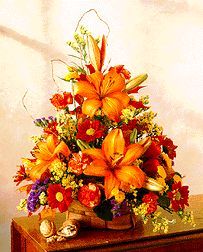 Our bright autumn arrangement is a very popular fall design. Description from… Fall Flower Crown, Fall Flowers, Fall Floral Arrangements, Dish Garden, Fall Bouquets, Fall Plants, Flowers Online, Fall Wreaths, Thanksgiving Decorations