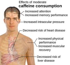 Good News for Caffeine addicts - Studies have shown that there are many health benefits to drinking coffee! Enjoy your coffee without guilt after you read about the many benefits of drinking coffee. Benefits Of Drinking Coffee, Coffee Health Benefits, Health And Nutrition, Health And Wellness, Health Fitness, Health Facts, Increase Memory, Giving Up Smoking, Caffeine Addiction