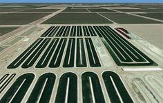 Algae biofuel raceway ponds