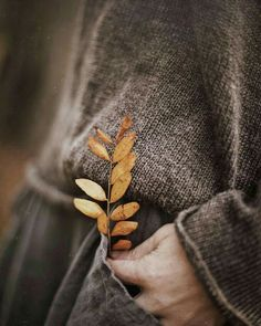 Image discovered by colorgala. Find images and videos about photography, aesthetic and autumn on We Heart It - the app to get lost in what you love. Autumn Day, Autumn Leaves, Late Autumn, Winter, Autumn Aesthetic, Aesthetic Photo, Autumn Photography, Photography Ideas, Fall Photos