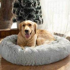 PetsComfy™ - Gemütliches Hundebett – Petns