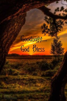 Good night everyone! Good Night For Him, Good Night Baby, Good Night Prayer, Good Night Everyone, Good Night Friends, Good Night Blessings, Good Night Wishes, Good Night Sweet Dreams, Good Night Image