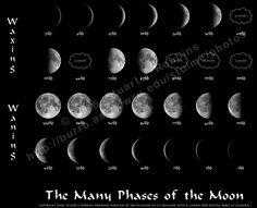 moon_phases2_big.jpg 1,440×1,170 pixels