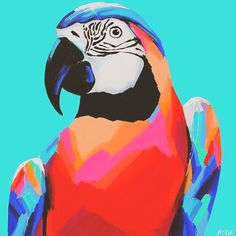 Day 6: Bright bold and beautiful. @anyapaintface Anya Brock from #perth is know for her gorgeous #animal portraits and #murals. ✌️#100daysofartists #art #macaw #anyabrock #australia