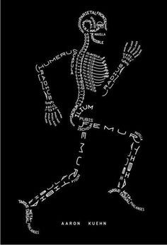 typography Bones - wish I had this in anatomy class