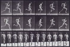 Eadweard Muybridge - Running at full speed; from 'Animal Locomotion. An Electro-Photographic Investigation of Consecutive Phases of Animal Movement 1872-1885'