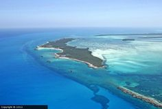Great Stirrup Cay, Bahamas - So many memories of many fun times here. Ahoy Matey, Norwegian Cruise Line, Maybe Someday, Kid Rock, Island Beach, Group Photos, Good Times, Places Ive Been, Travel