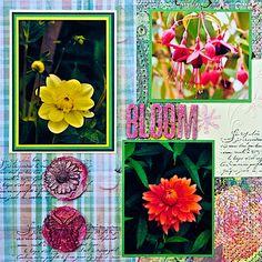 Crathes+Castle+Garden,+Scotland+-+LEFT+SIDE - Scrapbook.com