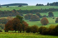 Autumn in the Belgium countryside.