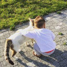 #ahmeturas hayvan sevgisi bambaşka