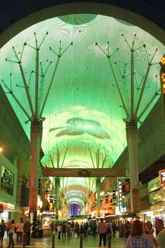 Fremont Street Light Show - Las Vegas This is such a great time! The light show is so fun and different all seasons. 2011