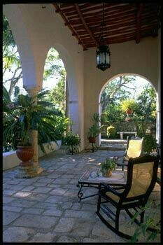 green and shady patio