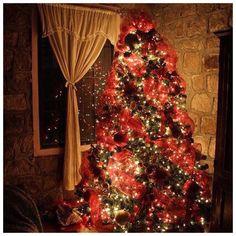 good morning everyone! 💚 ❆ it's christmas eve eve ahhhh I'm sooo excited, 2 more sleeps to go 🎅🏻🎄 ❆ #christmas ❤️