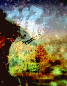 Artwork >> Kenneth Grzesik >> Hula 'Ike Ho'omaopopo