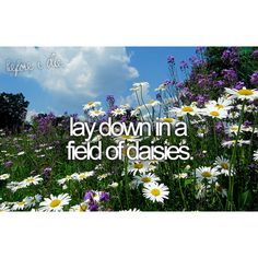 Lay down in a field of daisies like in the movies