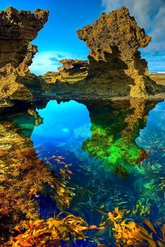 Rockpools at Sorrento Back Beach. Southern end of the Mornington Peninsula, Victoria.