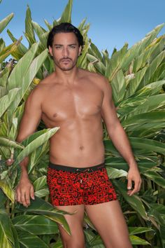 bruno banani Icon - color: red
