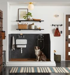 dog shower in laundry room utility sink Mudroom Laundry Room, Laundry Room Design, Dog Room Design, Mud Room Lockers, Alape Bucket Sink, Küchen Design, Interior Design, Dog Washing Station, Dog Station