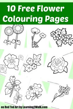10 Free Flower Colouring Pages - these would be lovely converted into greeting cards, or why not make your own set of memory or snap cards for the kids