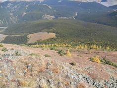 Views Pasque Mountain