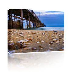 Sea Shells at Newport Pier