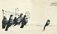 Banksy -- The work showed five grey pigeons holding up signs including one stating 'go back to Africa' towards a more colourful migratory swallow. Council removes Banksy artwork after complaints of racism. Banksy Graffiti, Street Art Banksy, Banksy Work, Bansky, Banksy Canvas, Banksy Prints, Street Art Utopia, Graffiti Artwork, Pop Art