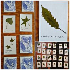 Pressed Leaf Memory game by Tyler Morris.  Read how he and his kids made them here: https://www.tylermorriswoodworking.com/news/pressed-leaf-memory-game/