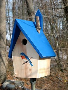 Eastern Blue Bird House Hand Crafted in the USA using all non-toxic materials. Built using Native White Pine, machine 5/8 thick, then glued & nailed. Material purchased direct from a local Saw Mill, outstanding grain. Drain holes in the floor, venting in upper roof area. Side