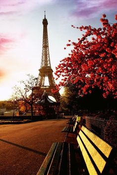 #Eiffel Tower, #Paris, #France