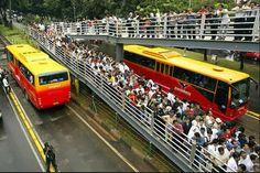 Bus Trans Jakarta Gratis Untuk Hari Ini ...