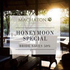 Honeymoon Special - Bride Saves Book a minimum stay at the beautiful Machaton Private Camp including all standard meals 2 game activities a complimentary bottle of wine upon arrival one private dinner and romantic turn down. Special valid until October. Honeymoon Special, Activity Games, Activities, African Safari, Stay The Night, Lodges, Romantic, October, Meals