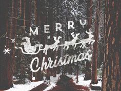 Dribbble - Merry Christmas! by Jorgen Grotdal | Design | Typography