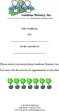 Blank Certificates Templates Free Download Pleasing Formal Letter Appreciation Template Service Customer Thank You Best .