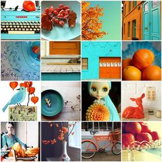 Turquoise and Orange by moline, via Flickr