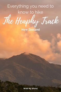 The Heaphy Track is the one of the longest of the Great Walks of New Zealand, so a little planning can make a huge difference to how much you enjoy this track. Here's our guide to everything you need to know before hiking the Heaphy Track.