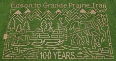 The Corn Maze! Can you find your way through it? Corn Maze, This Is Us, Kids Rugs, Spaces, Kid Friendly Rugs, Nursery Rugs
