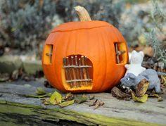 Vydlabejte si místo strašidla z dýně myší domeček! Stejně, jako to udělala blogerka Monika ve svém článku http://unasnakopecku.blogspot.cz/2014/10/mila-dyne-kdo-v-tobe-prebyva.html