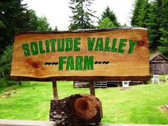 Property Name Sign SOLITUDE VALLEY FARM hand cut by SolitudeValley