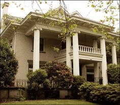 The Neoclassical Revival style is defined by a commanding facade with a full height porch, its roof supported by classical columns. The columns are often fluted and the capitals are usually ornate Ionic or Corinthian. Like the Colonial Revival, which is comparatively simple, the Neoclassical Revival is also symmetrical with its entry centered and flanked by a balanced array of windows. 1895-1950.