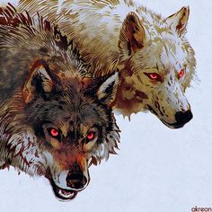 There's someone in the wolf Animal Drawings, Art Drawings, Wolf Drawings, Der Steppenwolf, Wolf Hybrid, Wolf Costume, Fantasy Wolf, Wolf Spirit, Beautiful Wolves