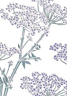 Giant Hogweed Queen Annes Lace Stencil