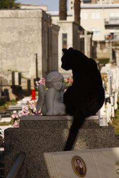 Agramonte Cemetery | Cemitério de Agramonte