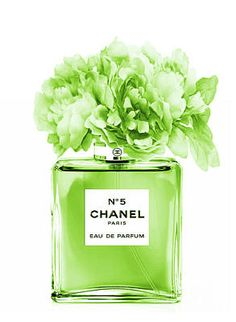 Chanel Perfume green Poster by Green Palace Green Aesthetic Tumblr, Mint Green Aesthetic, Rainbow Aesthetic, Aesthetic Colors, Aesthetic Collage, White Aesthetic, Wall Collage Decor, Photo Wall Collage, Photo Collages