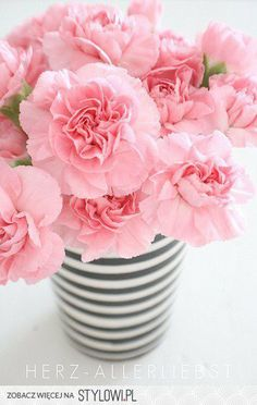 Pink carnations in a black + white striped vase